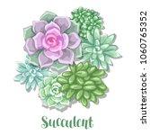 card with succulents. echeveria ... | Shutterstock .eps vector #1060765352