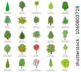 tree types icons set. isometric ...   Shutterstock .eps vector #1060803728