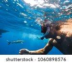 sharks swimming in bora bora... | Shutterstock . vector #1060898576