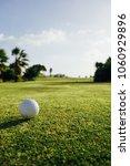 golf ball on green grass  palm... | Shutterstock . vector #1060929896