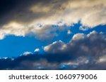 white  grey heavy fluffy ... | Shutterstock . vector #1060979006