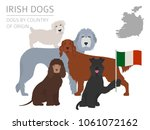dogs by country of origin.... | Shutterstock .eps vector #1061072162