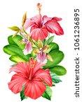 bouquet of flowers  hibiscus... | Shutterstock . vector #1061236895