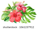 bouquet of flowers  hibiscus... | Shutterstock . vector #1061237912