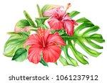 bouquet of flowers  hibiscus... | Shutterstock . vector #1061237912