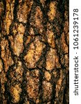 the art of crack tree cut... | Shutterstock . vector #1061239178