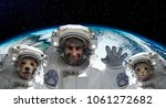 portrait of a spaceman with a... | Shutterstock . vector #1061272682