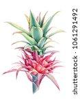 pink pineapple  watercolor... | Shutterstock . vector #1061291492