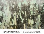 grunge background for your...   Shutterstock . vector #1061302406