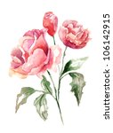 beautiful flowers  watercolor...   Shutterstock . vector #106142915