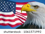 american bald eagle and the... | Shutterstock . vector #1061571992