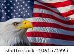 american bald eagle and the... | Shutterstock . vector #1061571995