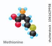 molecule of methionine  met  an ... | Shutterstock .eps vector #1061629958