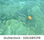 dry yellow leaf floating on a... | Shutterstock . vector #1061684198
