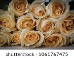 a bouquet of yellow roses | Shutterstock . vector #1061767475