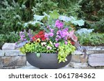 pretty potted flowers in a...   Shutterstock . vector #1061784362
