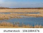 view of an open water marsh...   Shutterstock . vector #1061884376
