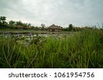 pond and huts in vietnamese... | Shutterstock . vector #1061954756