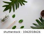 cosmetic skincare nature... | Shutterstock . vector #1062018626