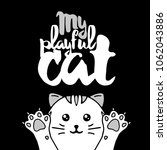 white cat. lettering with text  ... | Shutterstock .eps vector #1062043886