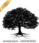 tree silhouette isolated on... | Shutterstock .eps vector #1062063026