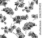 seamless pattern of hand drawn... | Shutterstock .eps vector #1062159455