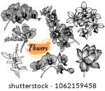 set of hand drawn sketch style... | Shutterstock .eps vector #1062159458