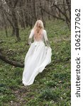 beautiful bride walking in... | Shutterstock . vector #1062177062