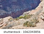 vegetation of the grand canyon  ... | Shutterstock . vector #1062343856