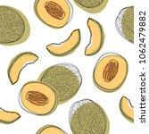 japanese melons sliced seamless ... | Shutterstock .eps vector #1062479882