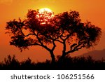 Sun Setting Behind A Maroela...