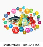 fundamentals of healthy eating. ... | Shutterstock .eps vector #1062641456