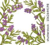 lavender plant vector frame | Shutterstock .eps vector #1062644198