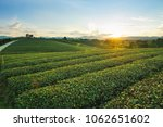 beautiful landscape view of... | Shutterstock . vector #1062651602
