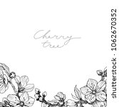 almond blossom branch border.... | Shutterstock .eps vector #1062670352