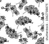 seamless pattern of hand drawn... | Shutterstock .eps vector #1062738875