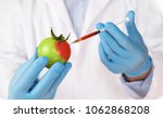 food genetic modification... | Shutterstock . vector #1062868208