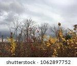 early autumn nature. dark blue... | Shutterstock . vector #1062897752