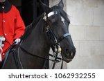A Black British Cavalry Horse...