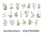 collection of detailed drawings ... | Shutterstock .eps vector #1062964082