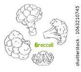 broccoli. vector set of hand... | Shutterstock .eps vector #1063210745