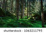 inside a forest in the present... | Shutterstock . vector #1063211795