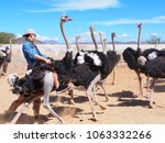 asian is riding ostrich at... | Shutterstock . vector #1063332266