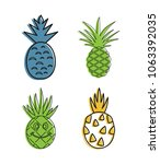 ananas icon set. color outline... | Shutterstock .eps vector #1063392035