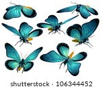 butterflies  isolated on white... | Shutterstock . vector #106344452
