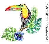 watercolor exotic tropical... | Shutterstock . vector #1063506542