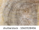 Small photo of Cut through tree section with rings and cracks landscape for background