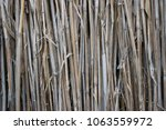 the texture of the dry reeds.... | Shutterstock . vector #1063559972