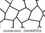black and white irregular grid  ... | Shutterstock .eps vector #1063605926