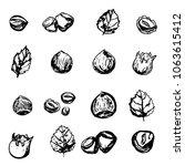hazel nut grunge set. isolated... | Shutterstock .eps vector #1063615412